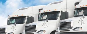 US logistics provider 'falls foul' of DNA test laws