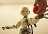 rod396 icub robot