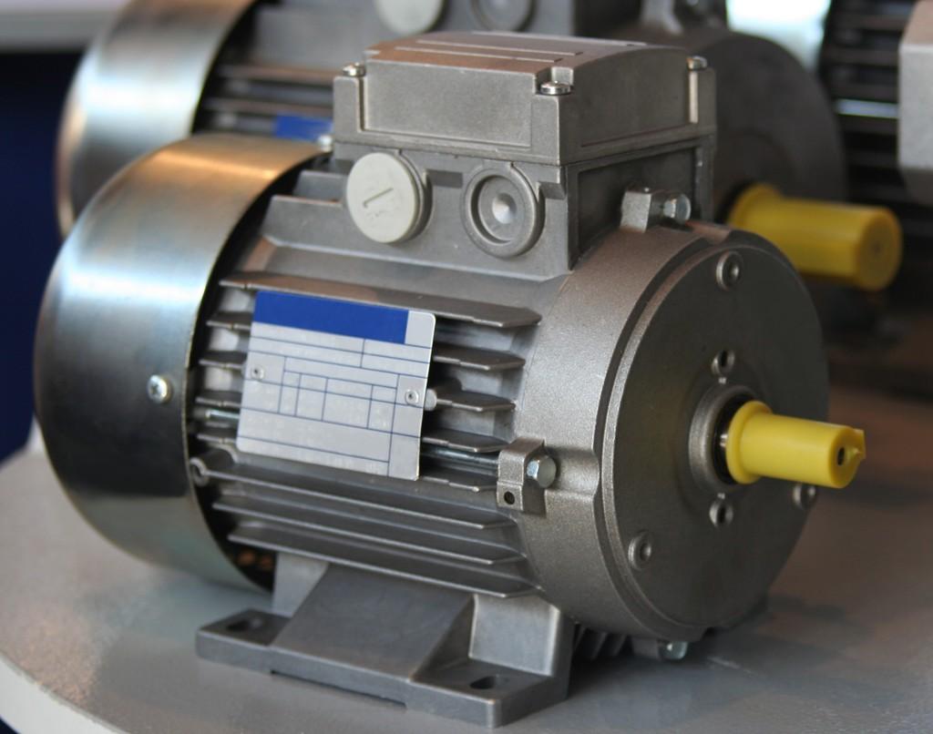 Causes of starter motor failure for How long does the nutribullet motor last